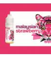 MALAYSIAN STRAWBERRY - CONCENTRE SOLANA